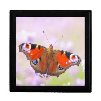 peacock butterfly over lavender keepsake box