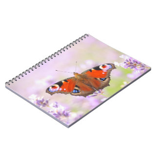 peacock butterfly over lavender notebook