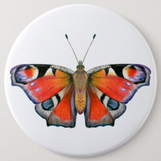 Peacock Butterfly Painting Watercolour Pinback Button