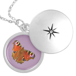 Peacock butterfly round locket necklace