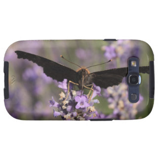peacock butterfly sucking lavender nectar samsung galaxy SIII case