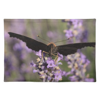 peacock butterfly sucking lavender nectar cloth placemat