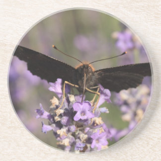peacock butterfly sucking lavender nectar drink coaster