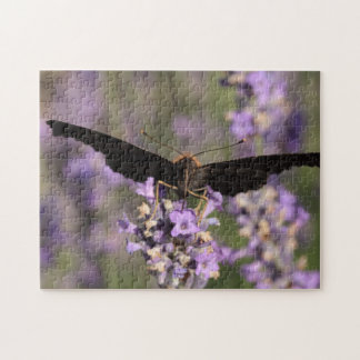 peacock butterfly sucking lavender nectar jigsaw puzzle