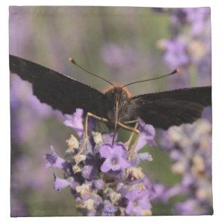 peacock butterfly sucking lavender nectar napkin