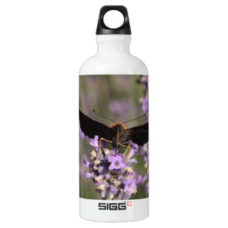 peacock butterfly sucking lavender nectar water bottle