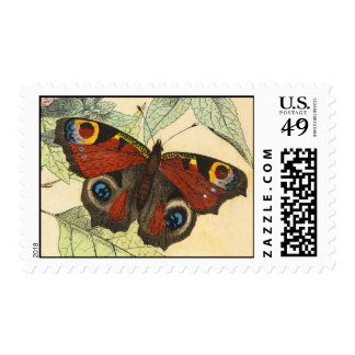 Peacock Butterfly - Vintage Art Postage Stamps