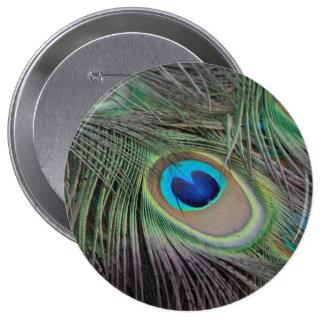 Peacock Button