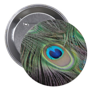 Peacock Pinback Button