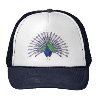 Peacock Caps Trucker Hat