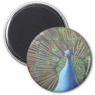 Peacock Circular Magnet