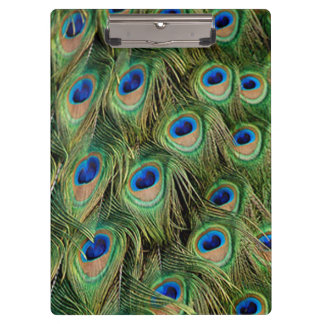 Peacock Clipboard