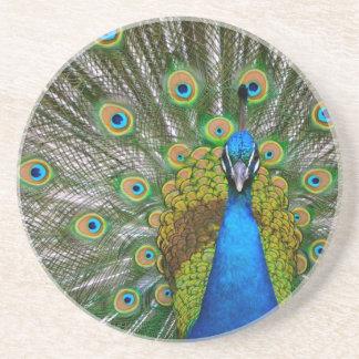 Peacock Beverage Coasters