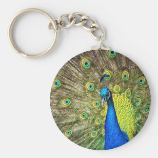 Peacock Color Beauty Keychains