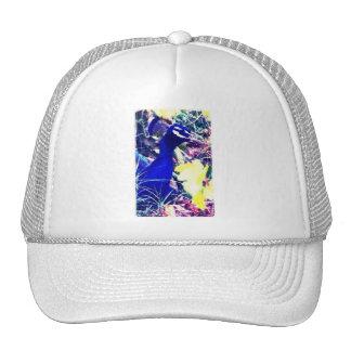Peacock colorido gorra
