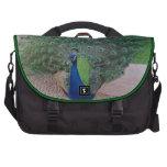 Peacock Commuter Bag