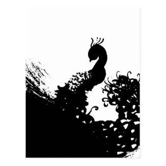 Peacock Darkly Postcard
