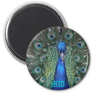 Peacock Daze. 2 Inch Round Magnet