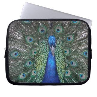 Peacock Daze Computer Sleeve
