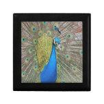 Peacock Design Gift Boxes