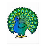 Peacock Design Post Card