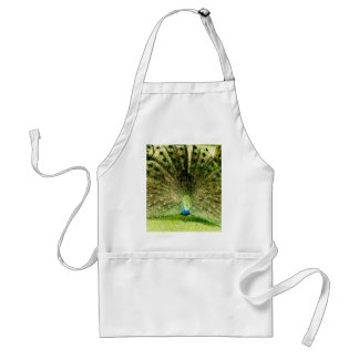 Peacock Display Colours Adult Apron