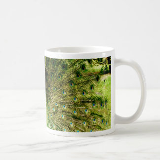 Peacock Display Colours Coffee Mug