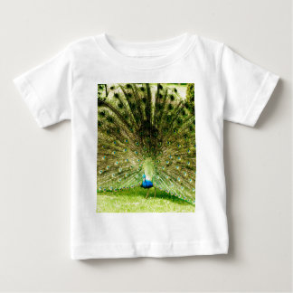 Peacock Display Colours T-shirt