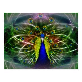 Peacock Dreamcatcher Post Card