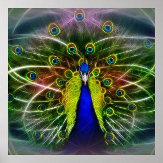 Peacock Dreamcatcher Poster