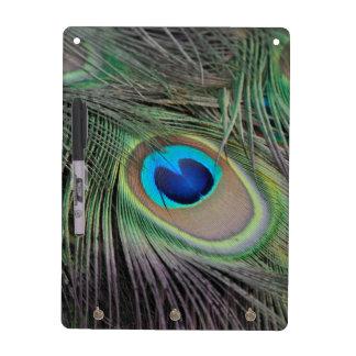 Peacock Dry-Erase Board