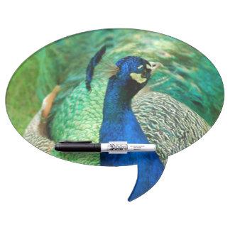 Peacock Dry Erase Whiteboards