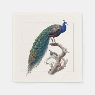 Peacock Elegant Natural History Paper Napkins