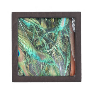 Peacock Exotic New Growth Gift Box