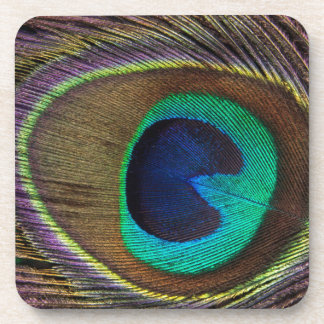 Peacock Eye Feather Beverage Coaster