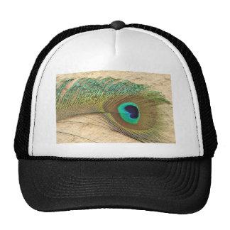 Peacock eye trucker hat