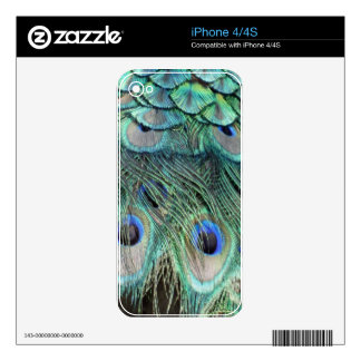 Peacock Eyes And Feathers iPhone 4 Skins