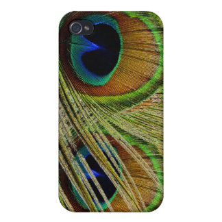 Peacock Eyes iPhone4 Case