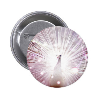 Peacock Fantasy in Pink Pinback Buttons