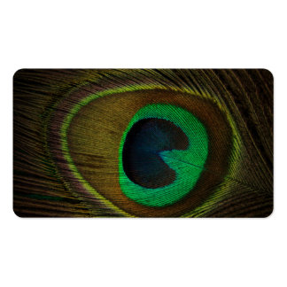peacock-feather-186339_Fotor_PES_20160101.jpg Business Card