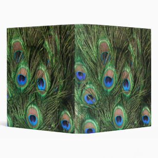 Peacock Feather 3 Ring Binders