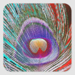Peacock Feather 3 Square Stickers