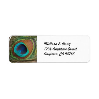 Peacock Feather Address Labels