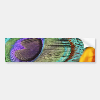 Peacock feather against flower bumper stickers