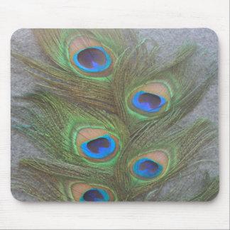 Peacock Feather Arrangement  Mousepad