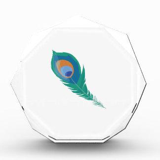 Peacock Feather Awards