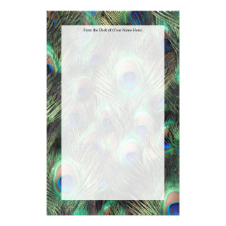 Peacock Feather Background Stationery