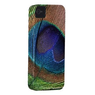 Peacock feather blue photo blackberry bold case