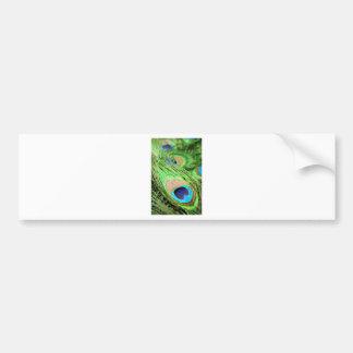 Peacock feather bumper sticker