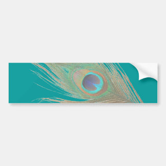 Peacock Feather Bumper Sticker